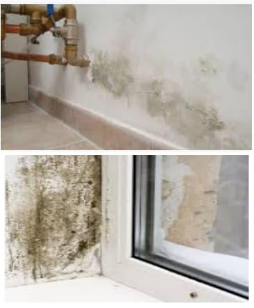 humedades en paredes por capilaridad